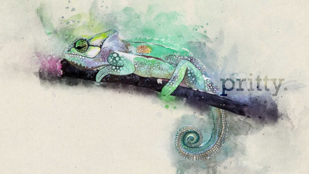 Pritty Hand Painted Watercolour Art Chameleon